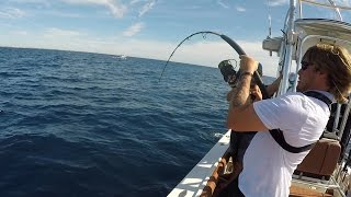 getlinkyoutube.com-CATCHING AN AMBERJACK IS IMPOSSIBLE!!! (Offshore Saltwater Fishing in Florida)