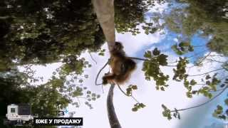 "GoPro HERO3 Plus - Promo video ""in sale"""