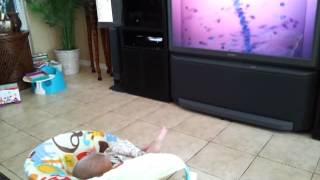 getlinkyoutube.com-Jonah watching Baby Einstein.