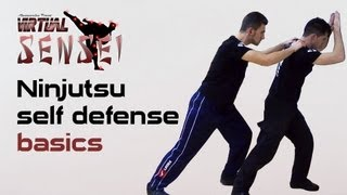 getlinkyoutube.com-Ninjutsu self defense basics - Joseph Arlettaz - Global Combat Reaction