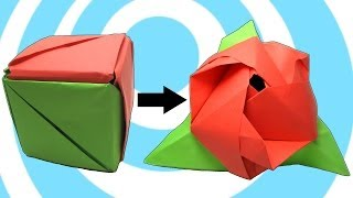 getlinkyoutube.com-Modular Origami Magic Rose Cube Instructions