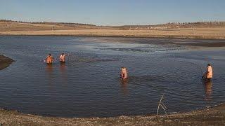 «Сельский порядок». Рыбоводство в Новооскольском районе