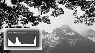 What the Heck is a  Histogram?? Understand Digital Photography's Most Useful Tool