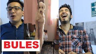 getlinkyoutube.com-10 Cosas ridículas de los BULES o TEIBOLS