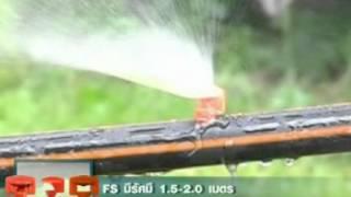 getlinkyoutube.com-S0611 ระบบน้ำเกษตรอินทรีย์ #1ดินและน้ำ