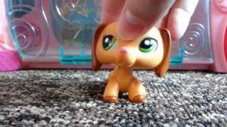 getlinkyoutube.com-LPS : Moje domki Littlest Pet Shop !!!