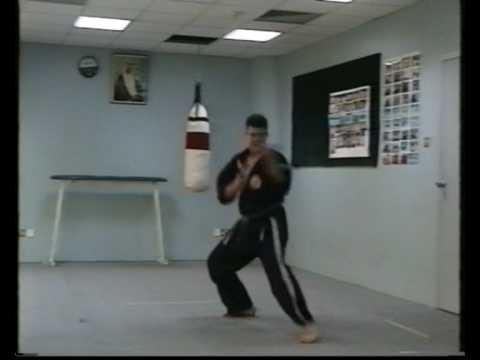 Okinawa-Te   Karate-do fifth video