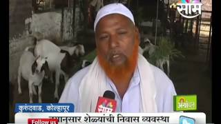 getlinkyoutube.com-Success story of Kolhapur's Ahmed and Imran brother's goat farming