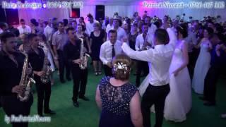 getlinkyoutube.com-Puiu Codreanu si Petrica Nicoara | Live | Cosmin si Loredana | Nunta ILOVITA 2016