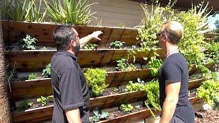 getlinkyoutube.com-Grow 120 Sq Ft of Garden Up Your House or Wall - Amazing Vertical Raised Bed Garden