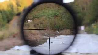 getlinkyoutube.com-.300 Blackout Optic Shootout! EoTech, PFI, Nikon M-300 & P-300 BLK