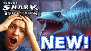getlinkyoutube.com-BRAND NEW SHARK! MR SNAPPY! - Hungry Shark Evolution Update - New Shark First Gameplay!