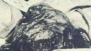getlinkyoutube.com-【閲覧注意】日航機墜落事故 日航ジャンボ123便 ボーイング747SR-100 生存者の声!あの時何が・・・生きる思い!感動!泣ける!