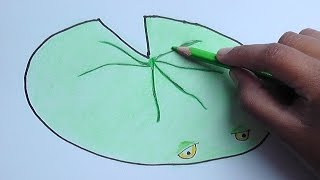getlinkyoutube.com-Dibujar y pintar a  nenufar (Plantas vs Zombies) - Draw and paint nenufar