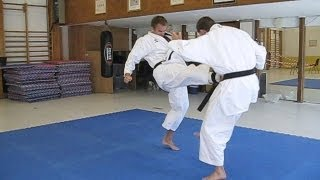 getlinkyoutube.com-KARATE - Tiger Karate - Shotokan and mix of martial arts