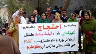 Protest for Regularization of Sindh Irrigation Area Water Board Contract Employees