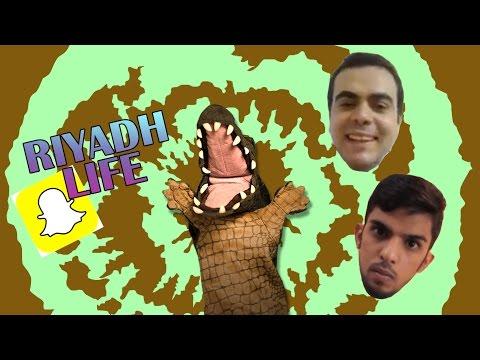 التمساح الحلقة ٩٧: اللايفية المدمنية  | Temsa7LY