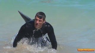 getlinkyoutube.com-SHARK PRANK!!! Fort Lauderdale Beach