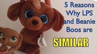 getlinkyoutube.com-5 Reasons Why LPS and Beanie Boos are Similar