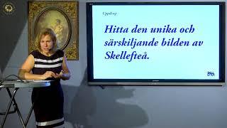 Så utvecklar vi bilden av norra Sverige-Skellefteås invånare och näringsliv de bästa marknadsförare