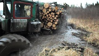Homemade forwarder, difficult road