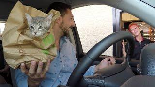 getlinkyoutube.com-DRIVE THRU PRANKS!!