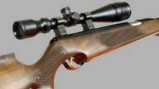 Top 10 air rifles 2012