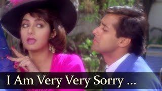I Am Very Very Sorry Tera Naam - Salman Khan - Sridevi - CHand Ka Tukda - Bollywood Hit Songs