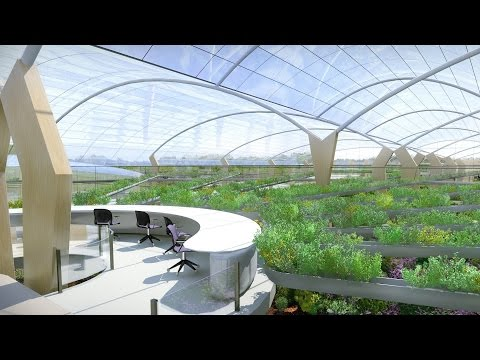 The Fascinating Solution To Sustainable Agriculture! Agricultural Revolution | Amazing Earth
