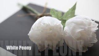 getlinkyoutube.com-How to make Crepepaper Flowers: Peony EASY&SIMPLE