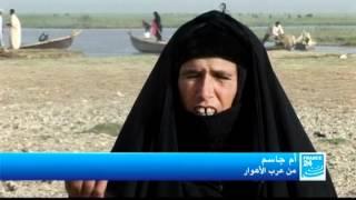 getlinkyoutube.com-العراق: ظروف معيشة عرب الأهوار الصعبة