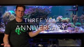 getlinkyoutube.com-3 Year Anniversary of my reef
