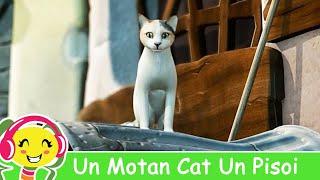 getlinkyoutube.com-Un Motan Cat Un Pisoi - Cantece Gradinita .ro