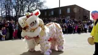 getlinkyoutube.com-Màn biểu diễn múa lân đặc sắc