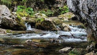 getlinkyoutube.com-เสียงธรรมชาติคลายเครียด Relax sound , Nature sound and Water sound