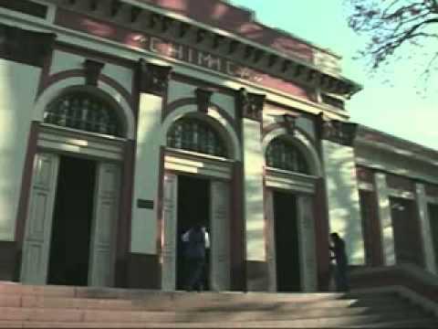ESALQ - Institucional