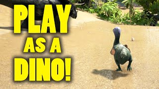 getlinkyoutube.com-Ark Survival Evolved - Play as Dino / Creatures Mod! - Gameplay