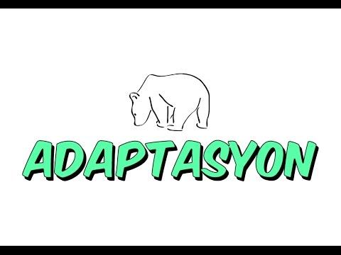 TEOG ADAPTASYON