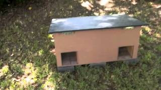 getlinkyoutube.com-Do-It-Yourself Feral Cat Shelter Overview
