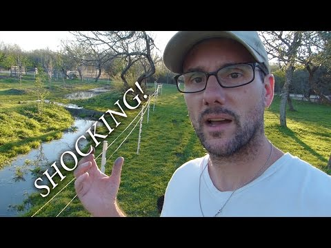 Solar Charged Fence Project - The SHOCKING Truth!