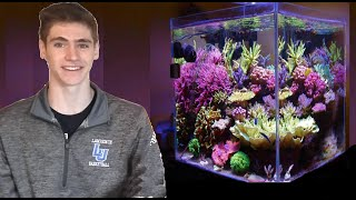 getlinkyoutube.com-How To Set Up a Nano Reef in 5 Minutes!