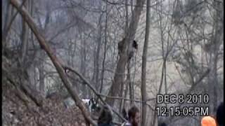 getlinkyoutube.com-WV Bear Hunting with Hounds- Jumping Bear