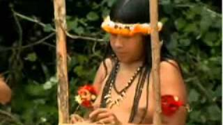 getlinkyoutube.com-Índias da tribo Awá-Guajá amamentam filhotes da floresta   programa Fantastico