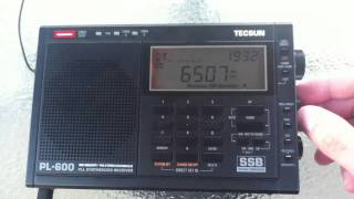 getlinkyoutube.com-Tecsun PL-600 receiving SSB