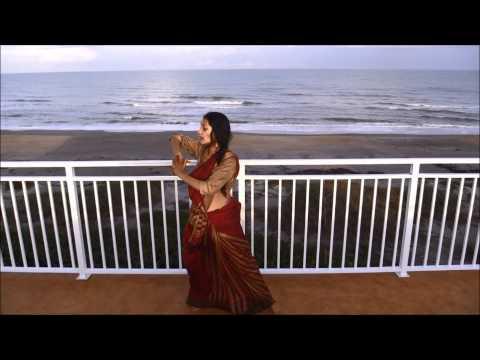 Manwa Lage Dance Steps/Happy New Year, Wedding Dance