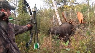 getlinkyoutube.com-Moose Hunt With Couple Bow and Perfect Shot. HD