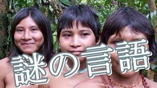 getlinkyoutube.com-【概念を超越】謎の言語を操るアマゾンの少数派民族「ピダハン族」/最凶の閲覧注意