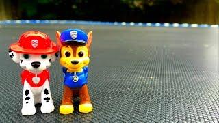 "getlinkyoutube.com-PAW PATROL ""Live Action Parody"" Kids Dressed Like Paw Patrol's Chase & Marshall Jump on Trampoline"
