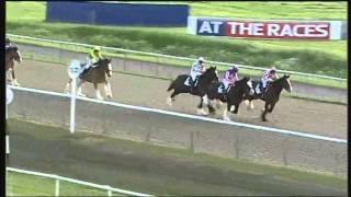 getlinkyoutube.com-Shire horse race