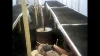 getlinkyoutube.com-Выращивание зеленого лука в теплице из семян сорта Грин Баннер.